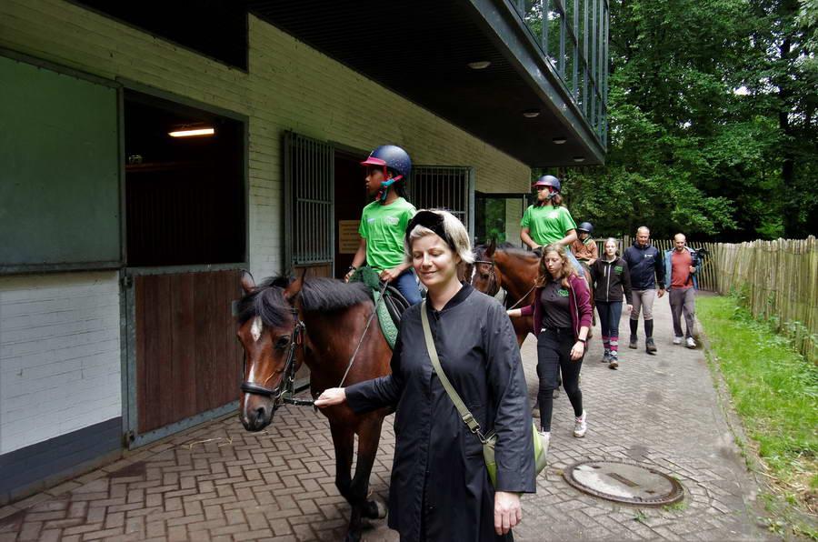 Werken als een Paard Vakantieschool uitgebreid met watersport
